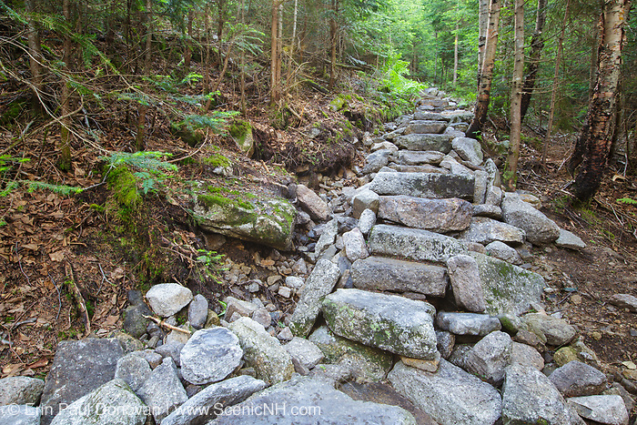 July 2012 - Stone steps along the Mt Tecumseh Trail in Waterville Valley, New Hampshire. Less than one year after being built this length of staircase is falling apart and erosion is visible on the hillside (left). This staircase was built in 2011.
