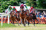 On The Edge ridden by Shane Ross pulls clear of Bubba Watson during the Lee Strand and O'Connell Plate at Castleisland Races on Sunday