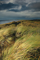 Dunes and an approaching storm at Prestwick, Ayrshire<br /> <br /> Copyright www.scottishhorizons.co.uk/Keith Fergus 2011 All Rights Reserved