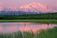 Mount McKinley from tundra pond<br />