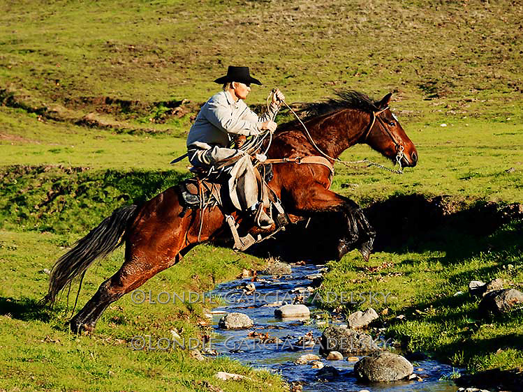 Cowboy jumps horse over creek at the Lone Valley Ranch, San Luis Obispo County