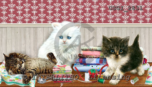 GIORDANO, CUTE ANIMALS, LUSTIGE TIERE, ANIMALITOS DIVERTIDOS, paintings+++++,USGI2831,#AC# cats,kittens,