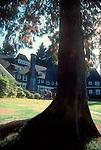 Lake Quinault Lodge, Olympic National Park, Olympic Peninsula, Washington State, Pacific Northwest, U.S.A.,