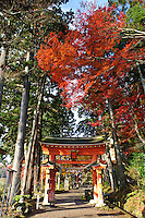 Takkokunoiwaya shrine, Hiraizumi, Iwate Pref, Japan, November 25, 2011.