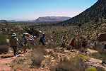 Willow Springs Trail in Red Rock State Park near Las Vegas, Nevada, NV, men hikers, women hikers, hiking, hiking path, hiking trail, image nv405-18443 .Photo copyright: Lee Foster, www.fostertravel.com, lee@fostertravel.com, 510-549-2202