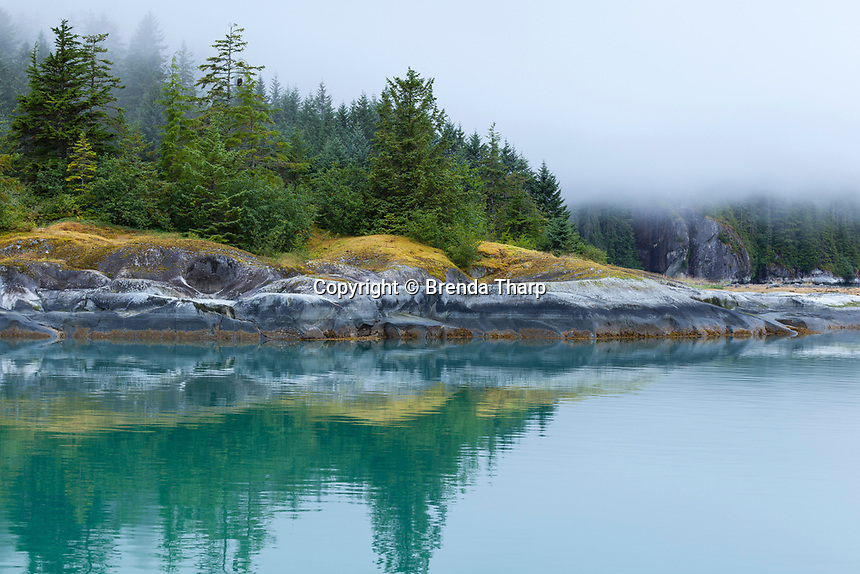 Calm waters create reflections of  a pristine forest, Alaska.
