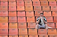 ATENÇÃO EDITOR: FOTO EMBARGADA PARA VEÍCULOS INTERNACIONAIS - SÃO PAULO, SP, 25 DE NOVEMBRO DE 2012 - CAMPEONATO BRASILEIRO - PALMEIRAS x ATLETICO GOIANIENSE: Pouco publico comparece ao Pacaembú para assistir a partida Palmeiras x Atletico Goianiense, válida pela 37ª rodada do Campeonato Brasileiro no Estádio do Pacaembú. FOTO: LEVI BIANCO - BRAZIL PHOTO PRESS