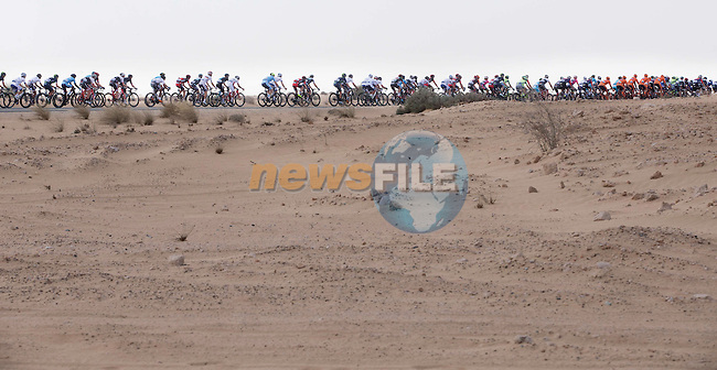 The peloton pass by the Al Qudra bike path during Stage 2, the Nakheel Stage, of the 2016 Dubai Tour starting at the Dubai International Marine Club and running 188km to Palm Jumeirah Atlantis, Dubai, United Arab Emirates. 4th February 2016.<br /> Picture: ANSA/Claudio Peri | Newsfile<br /> <br /> <br /> All photos usage must carry mandatory copyright credit (&copy; Newsfile | Eoin Clarke)