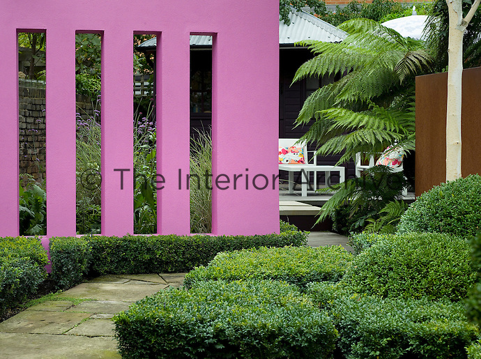 The old flagstone pathway bordered by geometric shapes of Buxus leads past the pink wall to a seating area at the rear of the garden