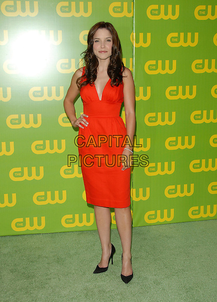 SOPHIA BUSH.The CW Launch Party held at Warner Brothers' Studios in Burbank, California, USA..September 18th, 2006.Ref: DVS.full length red dress hand on hip.www.capitalpictures.com.sales@capitalpictures.com.©Debbie VanStory/Capital Pictures