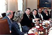 United States President Ronald Reagan makes a point during his meeting with Soviet experts at the White House in Washington, D.C. on Thursday, November 7, 1985.  From left to right: Nina Turmarkin, Secretary of State George Shultz, President Reagan, Secretary of Defense Caspar Weinberger, Richard Pipes, and Robert Gates, Deputy Director of Intelligence, Central Intelligence Agency (CIA)..Mandatory Credit: Pete Souza - White House via CNP