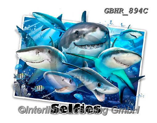 Howard, SELFIES, paintings+++++,GBHR894C,#Selfies#, EVERYDAY ,sharks,maritime