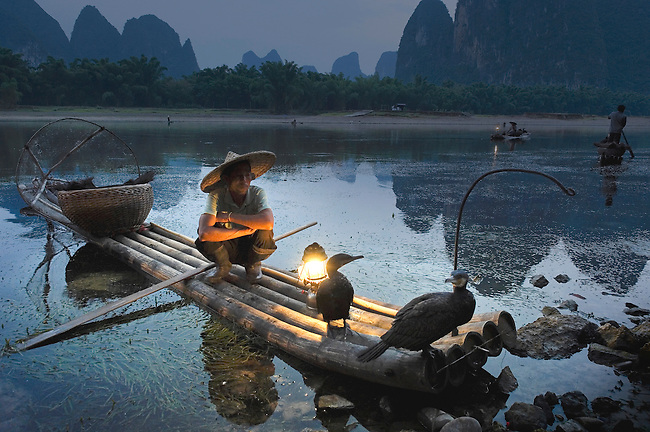 Fishermen use cormants to catch fish along Li River in the morning. Laterns help them work and the light also attracts fish.  The birds have tight rings around their throat so they cannot swallow their catch.