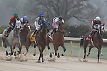 March 14, 2015: The start of the Azeri Stakes race at Oaklawn Park in Hot Springs, AR. Justin Manning/ESW/CSM