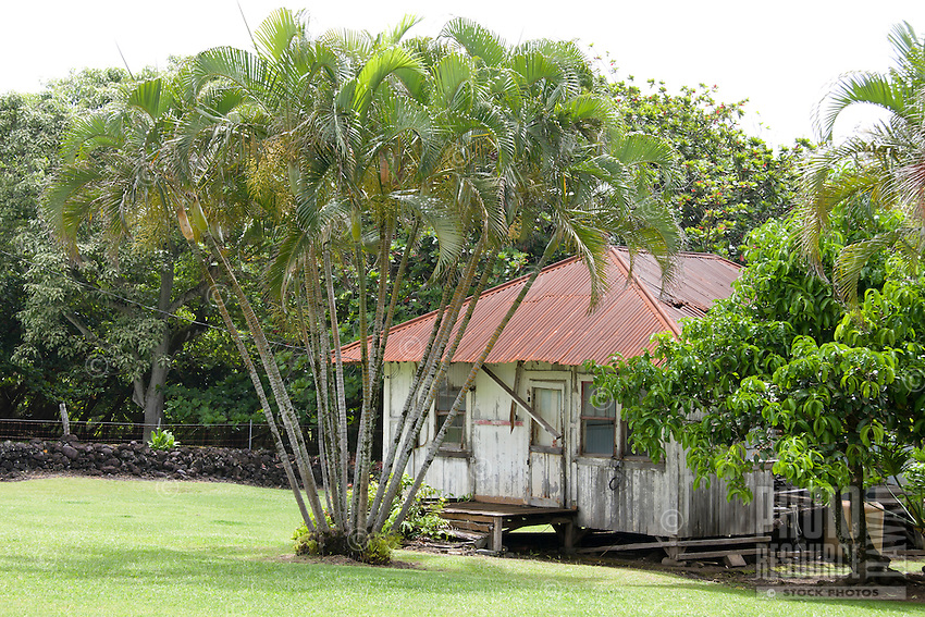 An old Hawaiian home along the Hana Highway, Maui.