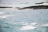 EXUMA, Bahamas. Kite surfers surfing along the waters of the Exuma Islands.