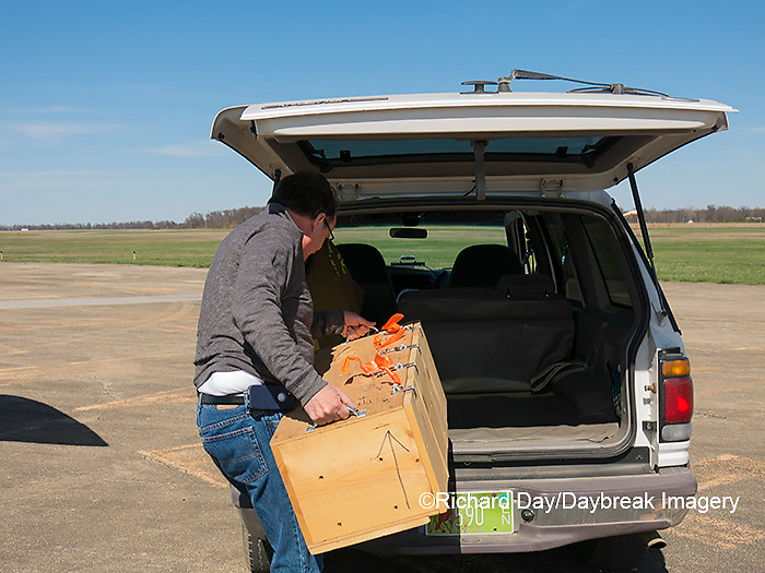 00842-06306 Transporting Greater Prairie-Chickens (Tympanuchus cupido) from airplane from Kansas to be released in Marion Co. IL