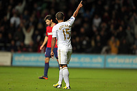 Sunday, 28 November 2012<br /> Pictured: Wayne Routledge of Swansea celebrating his second goal<br /> Re: Barclays Premier League, Swansea City FC v West Bromwich Albion at the Liberty Stadium, south Wales.