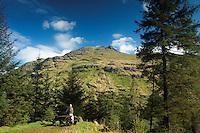 The Cobbler (Ben Arthur) from the Cat Craig Loop, the Argyll Forest Park above Glen Croe, Argyll & Bute