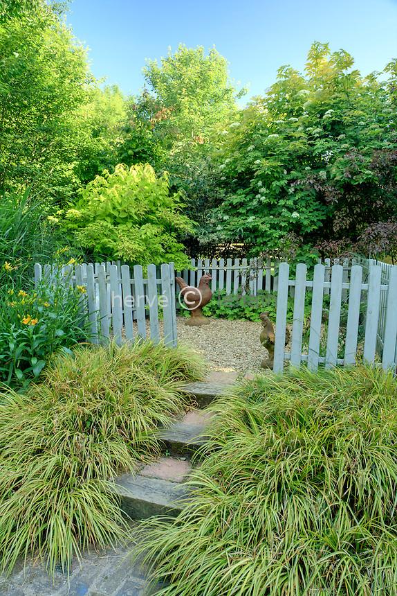 Jardins du pays d'Auge (mention obligatoire dans la légende ou le crédit photo):.devant le poulailler, espace closavec escalier bordé d'Acorus gramineus 'Ogon'.
