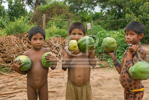 Ngoiwere Village, Mato Grosso State, Brazil. Kisedje (Suya) boys with body paint holding mamao papaya.