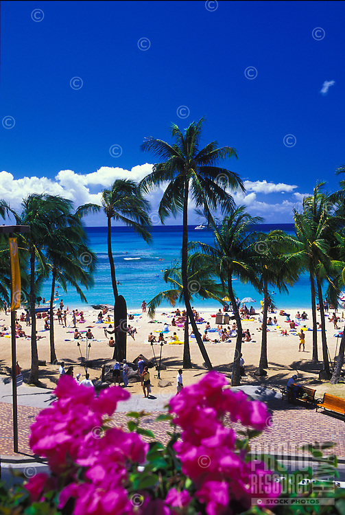 Waikiki Beach with palm trees and tourists on a sunny day