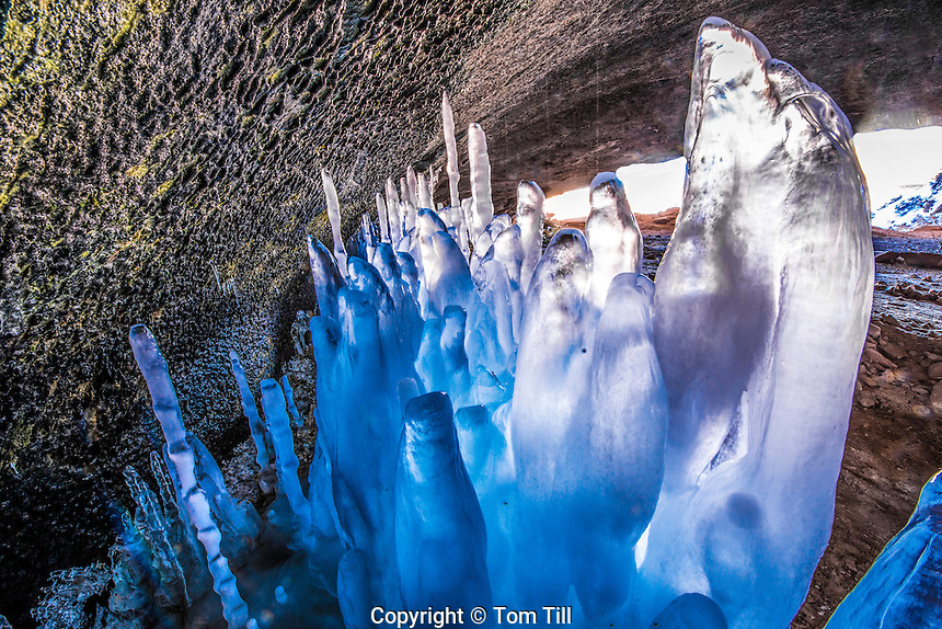 Ice forms at a spring, Arches National Park, Utah, Rare ice forms after periods of intense cold