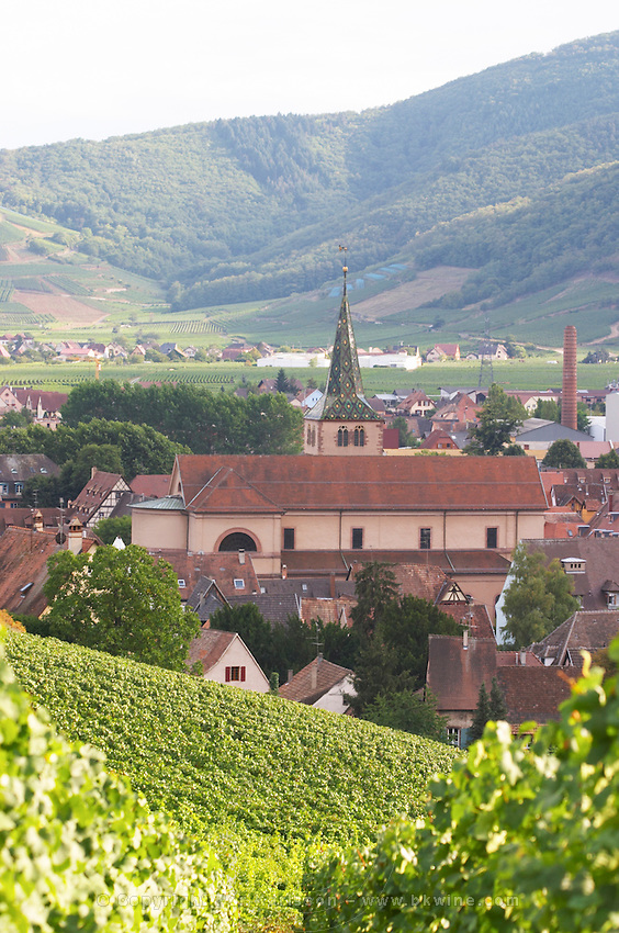 vineyard view to village from brand gc turckheim alsace france
