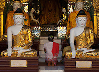 A woman praying in one of the many pavilions which encircle the main stupa of the magnificent Shwedagon Paya (or pagoda) in Yangon, Myanmar, is dwarfed by the large Buddhas inhabiting the structure.