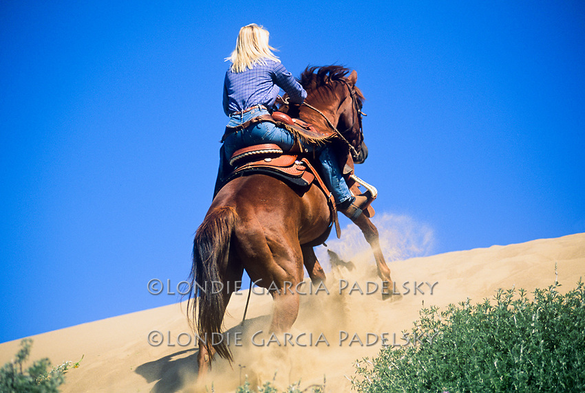 Cowgirl running her horse up a sand dune, Central Coast, California
