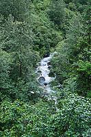 Mountain stream, Alaska, USA