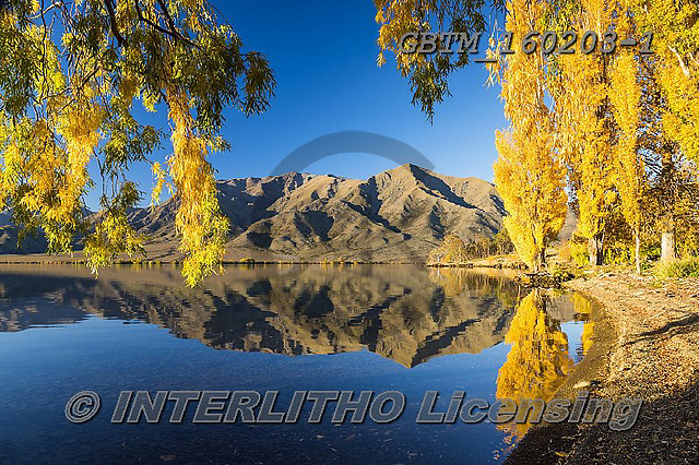 Tom Mackie, LANDSCAPES, LANDSCHAFTEN, PAISAJES, photos,+Lake Benmore, New Zealand, Tom Mackie, Worldwide, autumn, autumnal, beautiful, fall, holiday destination, horizontally, horiz+ontals, mirror image, mountain, mountains, peaceful, poplar tree, reflect, reflecting, reflection, reflections, restoftheworl+dgallery, scenery, scenic, season, tourist attraction, tranquil, tranquility, tree, trees, vacation, water, water's edge,Lake+Benmore, New Zealand, Tom Mackie, Worldwide, autumn, autumnal, beautiful, fall, holiday destination, horizontally, horizonta+,GBTM160203-1,#l#