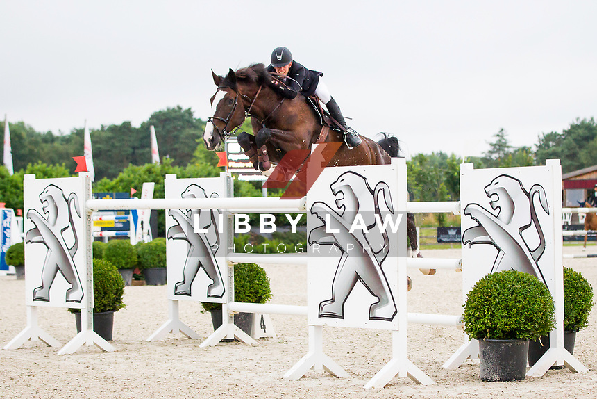 BEL-Jeroen Appelen (FILESTO VD HERKANT) FINAL-1ST:  CSI3* TABLE A AGAINST THE CLOCK WITH JUMP OFF (145cm): Small Grand Prix - Qalifier for Grand Prix: 2014 BEL-Bonheiden CSI1*/CSI3* (Saturday 28 June) CREDIT: Libby Law COPYRIGHT: LIBBY LAW PHOTOGRAPHY - NZL