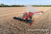 63801-13410 Harvesting soybeans in fall-aerial  Marion Co. IL