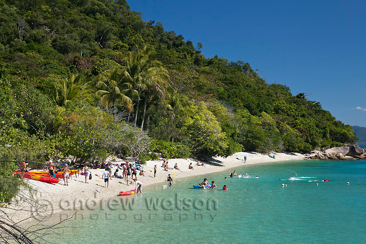 Swimmers on the beach at Welcome Bay.  Fitzroy Island National Park, Cairns, Queensland, Austtralia
