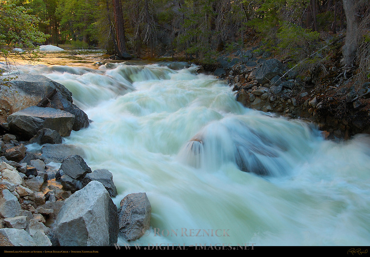 Lower Tenaya Creek during Spring Flood, Outlet from Lower Mirror Lake at Sunrise, Yosemite National Park