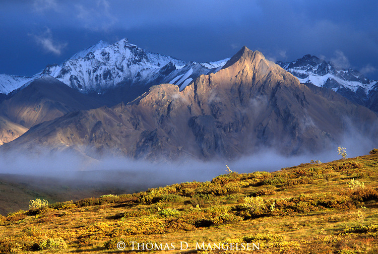 Alaska mountain range in Denali National Park, Alaska.
