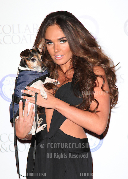 Tamara Ecclestone arriving for the Collars And Coats Ball, at Battersea Evolution, London. 08/11/2012 Picture by: Alexandra Glen / Featureflash