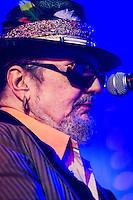 Dr. John at Voodoo Fest 2013 in New Orleans, LA on Day 3.
