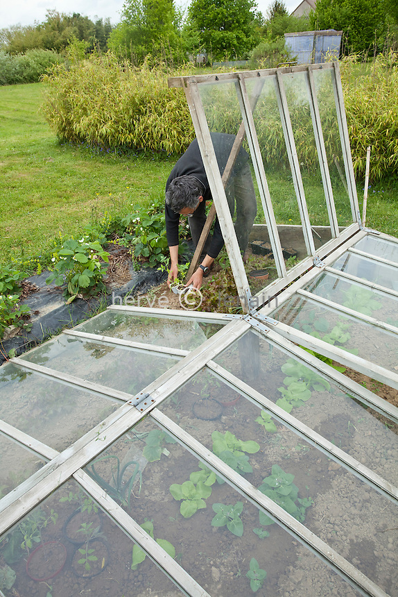 plantation sous chassis // cold frame & gardener