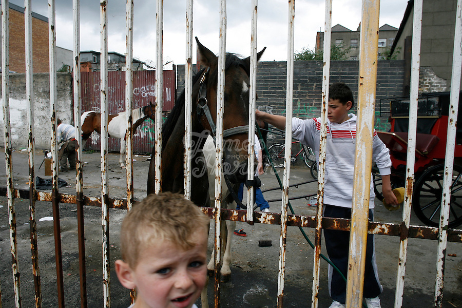 Teenagers are pictured cleaning their horses  on waste ground next to the Molyneaux yard stables near the Vicar Street Flats, inner city Dublin Ireland. Some of the teenagers can keep their horses here for 80 Euros a week.
