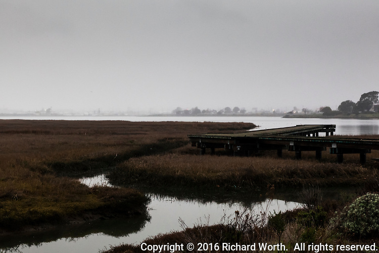 A channel makes its way to the bay  flowing past an observation platform.  In the background, the Oakland city skyline is invisible, shrouded by mist on a winter afternoon at the Martin Luther King Jr. Regional Shoreline two days before Martin Luther King Jr. Day,2016.