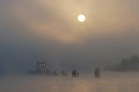 Deutschland, Hamburg, Hafen, Hafencity, Nebel, Reede, Norderelbe, Elbe, Sonnenaufgang