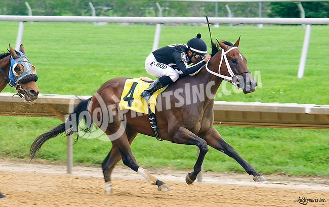Inaswagger winning at Delaware Park on 6/4/16