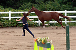 BABYLON, NY-MONDAY, AUGUST 13, 2007: Katie Proodian of Babylon chases her horse &quot;Louie&quot; around the corral at the Babylon Riding Center in Babylon on Monday August 13, 2007. She said it was exercise for both her and Louie.<br /> Newsday / Jim Peppler