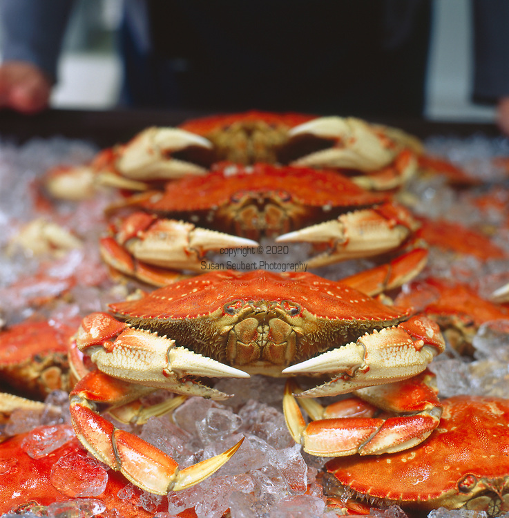 Dungeness Crab at the Portland Farmers' Market