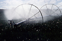 IRRIGATION<br /> Wheel Line Irrigation, Idaho<br /> A series of pipes, each with a wheel affixed to its center are assembled across the field. Water is supplied at one end from a hose. After enough water has been applied, the hose is detached and the assembled is rolled 10 meters forward on the field.