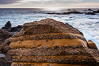 United States, California, Point Lobos State Natural Reserve. Rocky eroded coast.