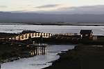 Don Edwards San Francisco Bay National Wildlife Refuge, Newark