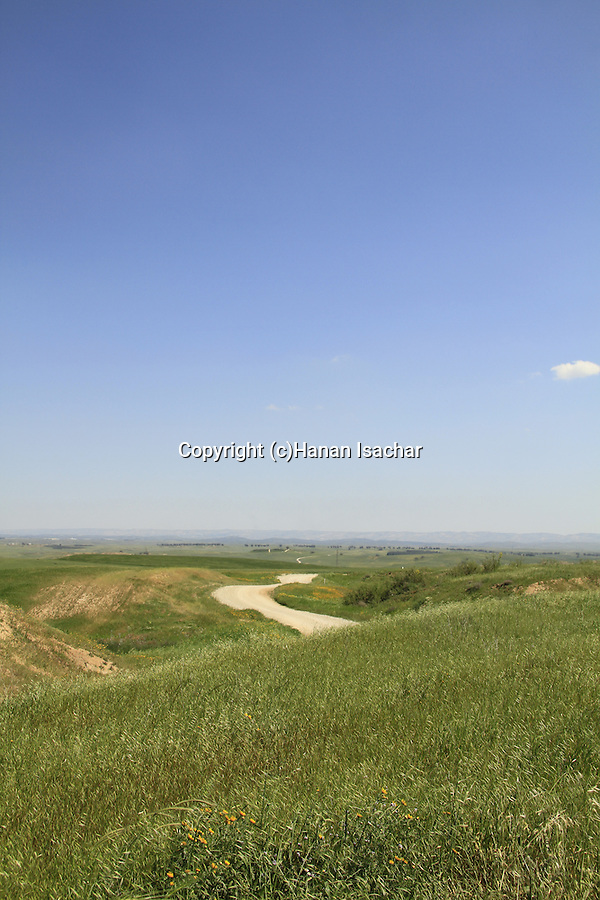 Israel, Coastal Plain, Nahal Shikma Scenic Road